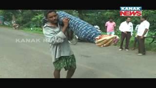 Man Carries Dead Body of His Wife On Shoulder In Kalahandi