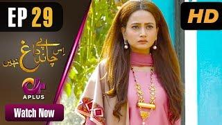 Is Chand Pe Dagh Nahin - Episode 29 | Aplus ᴴᴰ Dramas | Zarnish Khan | Pakistani Drama