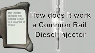 Common Rail Injector