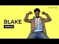 Download Video Download BLAKE
