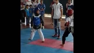 Taekwondo gibo(1)