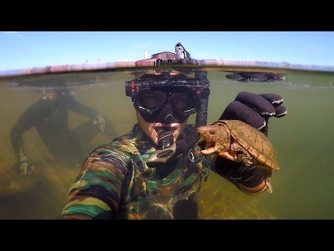 Found Knife Razor Blade and 50 Swimbait Underwater in River Freediving DALLMYD