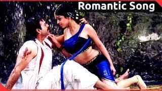 Subash Chandra Bose Movie    Neredu Pallu Video Song    Venkatesh, Shriya