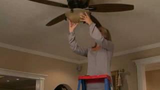 Click-In Hugger Fan Video