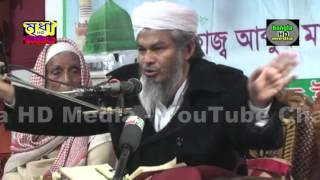 Maulana  najirul amin rezvi