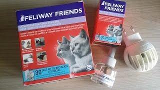Si tus gatos se pelean, Feliway Friends es la clave para conseguir que se lleven bien.