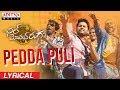 pedda-puli-lyrical--chal-mohan-ranga-movie-songs--nithiin--megha-akash--thaman-s