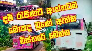 Dam Rajina Bus-දම් රැජිණට ඇත්තටම මොකද වුණේ.. ඇත්ත විස්තරේ මෙන්න