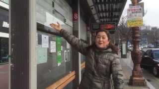 Riding Buses in Korea! | Hippie Korea