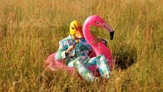 Hartz 4 und der Tag gehört dir -  der zweite Partyhit von Ingo ohne Flamingo