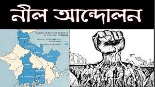 নীল বিদ্রোহের ইতিহাস- Indigo Revolt- Nil Revaluation