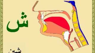 مخارج الحروف العربية و أسمائها بالرسم التوضيحي