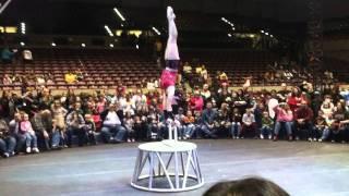 Circus Footage