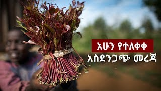 Ethiopia - Sheger  Special News March 20, 2018
