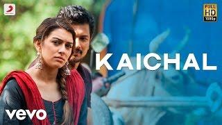 Manithan - Kaichal Video | Udhayanidhi | Santhosh Narayanan
