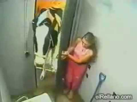 COW AND GIRL