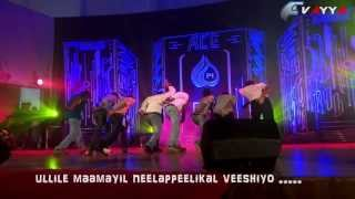 Vayye Boyz DAnce (2010-2014 EC )