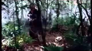 Phairii Phinaat Paa Mawrana - Vengeance - Preaw Sirisuwan, Tailandia, 2006)