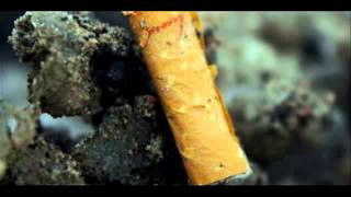 Khmer News Video Clip | Cigarette
