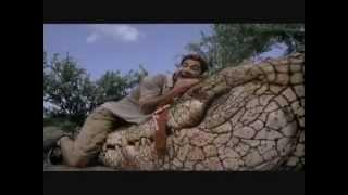 The Screen Hopper: Movie Review #1 - CROCODILE (2000)