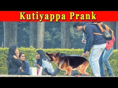 Xxx Mp4 Dog Bark Prank On Girls Funny Reaction Of Girls Pranks In India 2018 Funday Pranks 3gp Sex