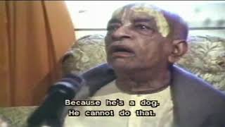 Srila Prabhupad - Dog Never Inquires