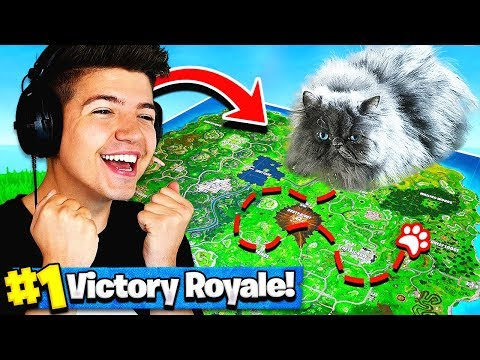 Using A CAT To WIN FORTNITE Battle Royale