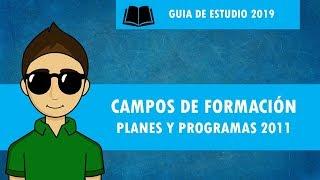 CAMPOS DE FORMACION Planes y programas 2011