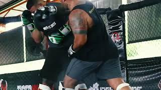 Mark Hunt sparring with Tai Tuivasa & Jake Heun