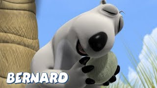 Bernard Bear | The Desert Island AND MORE | 30 min Compilation | Cartoons for Children