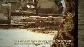 Forgotten Voice - Women in the 2011 Floods