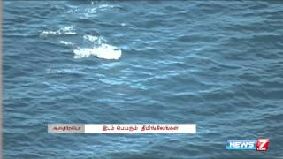 Migrating whales in Australia | World | News7 Tamil