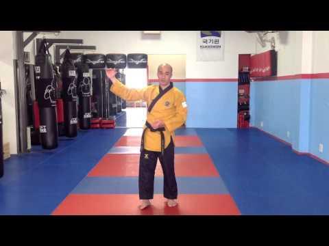 Xxx Mp4 Taekwondo Poomsae Tutorial Taeguk Ee Jang Taeguk Form No 2 3gp Sex