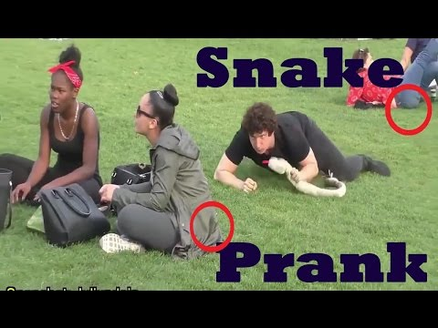 Ultimate Funny Snake Scare Pranks - Best Snake prank ever 2016 - Try Not To Laugh✔