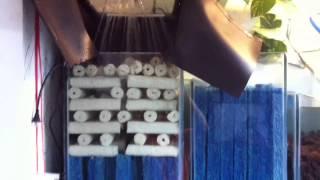 Hệ thống bơm,hút,lọc cho hồ cá Koi