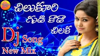 Chilukuri Gudi Kada chilaka   Private Dj Songs   Dj Songs   Telangana Folk Songs   New Folk Dj Songs