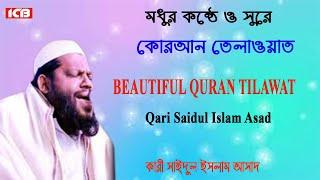মধুর কন্ঠে কোরআন তেলাওয়াত Qari Mowlana Saidul Islam Asad In Borni