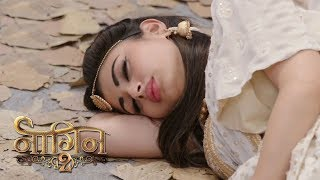 NAAGIN 2 - 20th August 2017 | Upcoming Twist in Naagin 2 | Colors Tv NAAGIN Season 2 2017