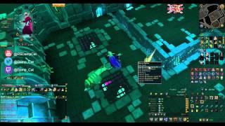 Legiones - Elite-Blazeit for SIGNETS! [180 DRY]