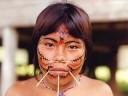 Amazonas Indios do Brasil