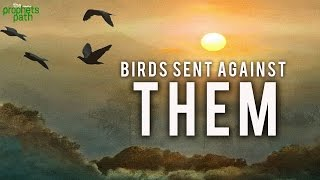 Birds Were Sent Against Them