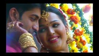 kerala hindu wedding 2016 - video palace attingal