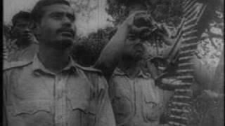১৯৭১ সাল। বাংলাদেশের মুক্তিযুদ্ধ