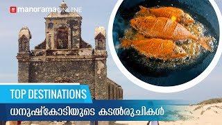 Dhanushkodi - Taste the Food