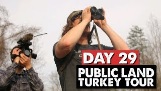 OHIO PUBLIC LAND TURKEY HUNTING! - Public Land Turkey Tour Day 29