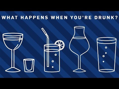 What Happens When You're Drunk? -
