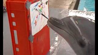 Dolphin painting project