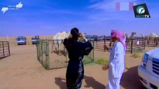 رئيس مجلس إدارة المراعي| سلطان بن محمد الكبير| الجزء الاول