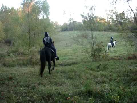 Xxx Mp4 Me And My Sister Riding Horses 3gp Sex