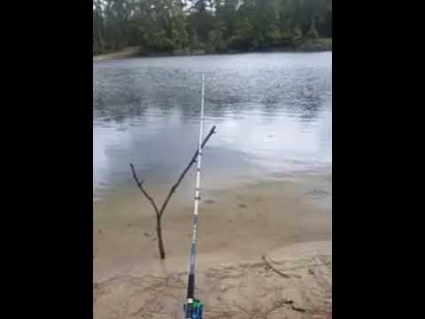 Xxx Mp4 Fishing 3gp Sex